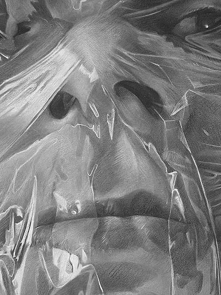 Scott Hutchison - Plastic wrapped Face Detail in Charcoal